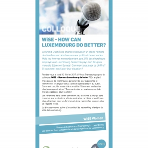 WiSE - How can Luxembourg do better?